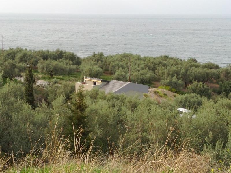 Olive's field residence, holiday rental in Egira