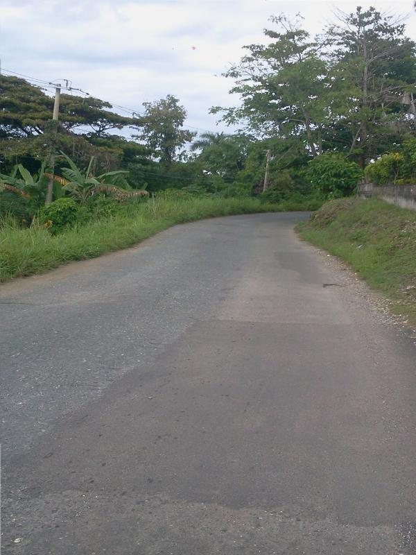 Street view(going further away from Port Antonio)