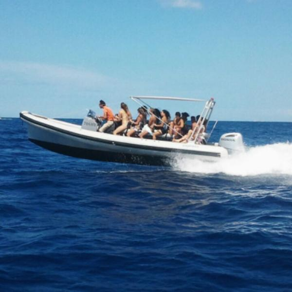 Speedboat whole day tour in corporation with Aduros tours .