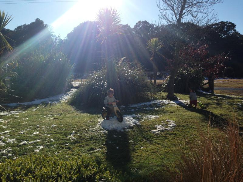 Front garden after snowfall