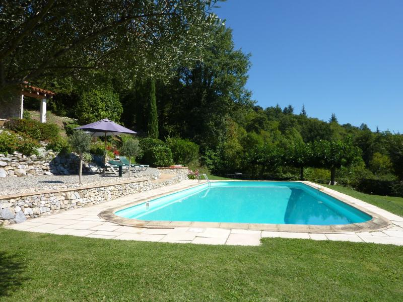 Pool, sun beds and parasols
