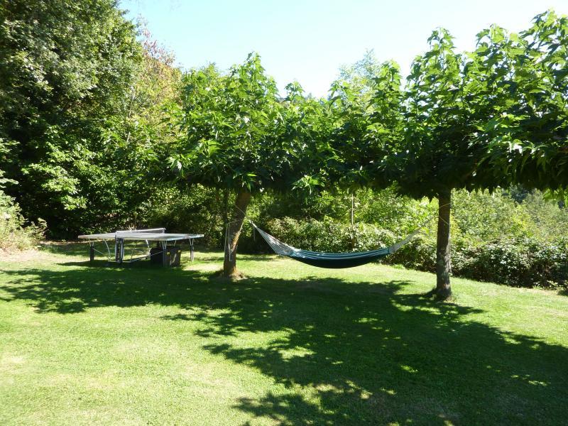 Table tennis and hammock