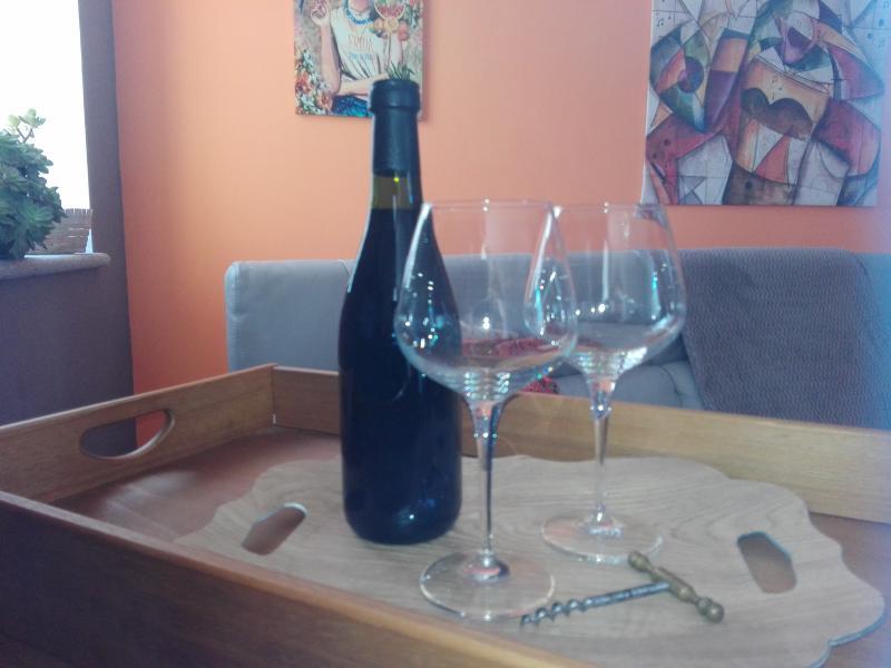 Fireplace, comfortable sofa and good wine!!