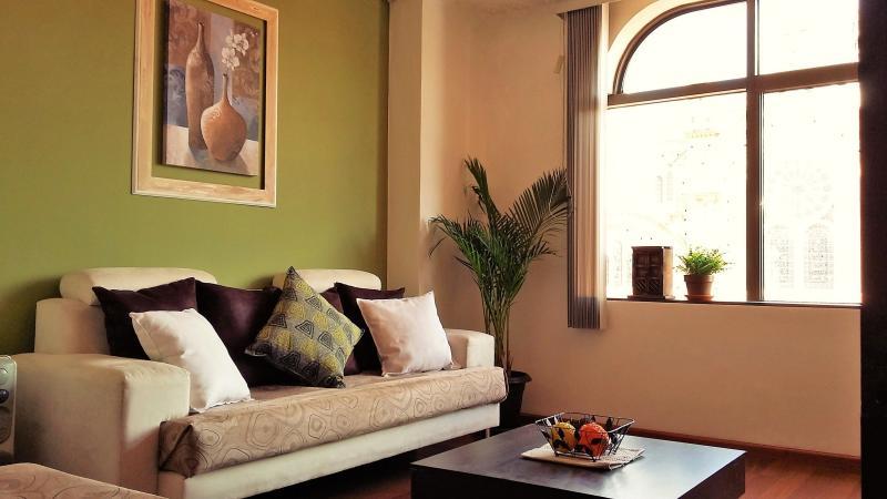 Historic Center Cuenca (Spacious - Cozy  & Quiet), vacation rental in Cuenca