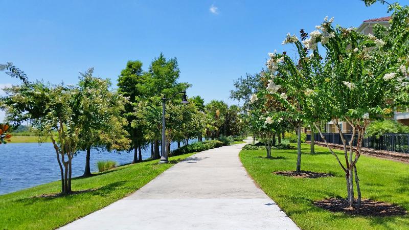 Lakeview Dreams