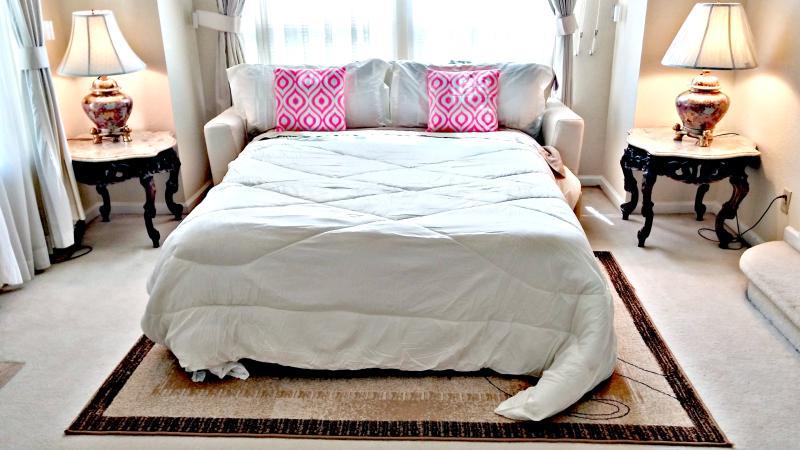 Queen Size Sofa Bed in Living Room
