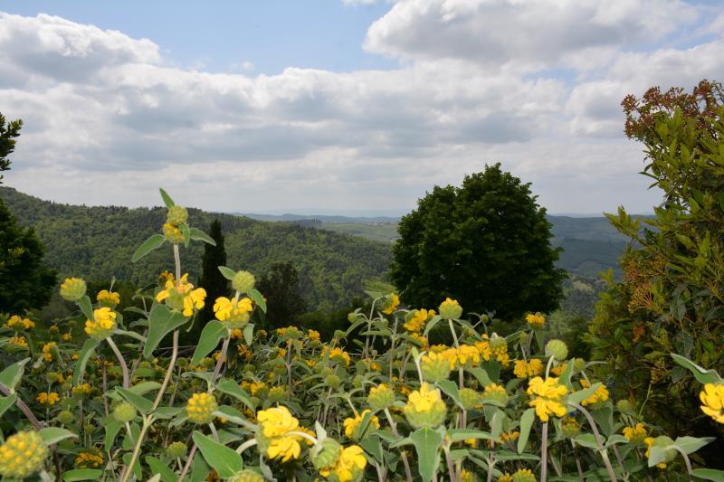 Magnificient views in the heart of Chianti, location de vacances à Volpaia