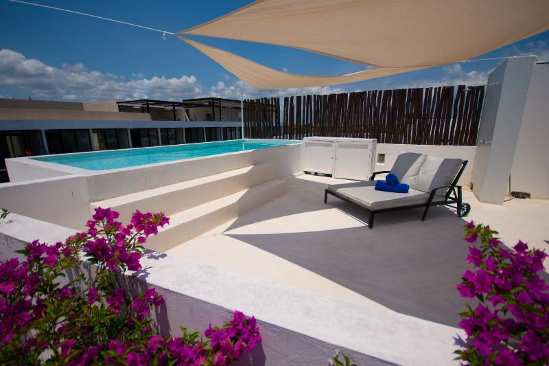 private rooftop terrace with private pool