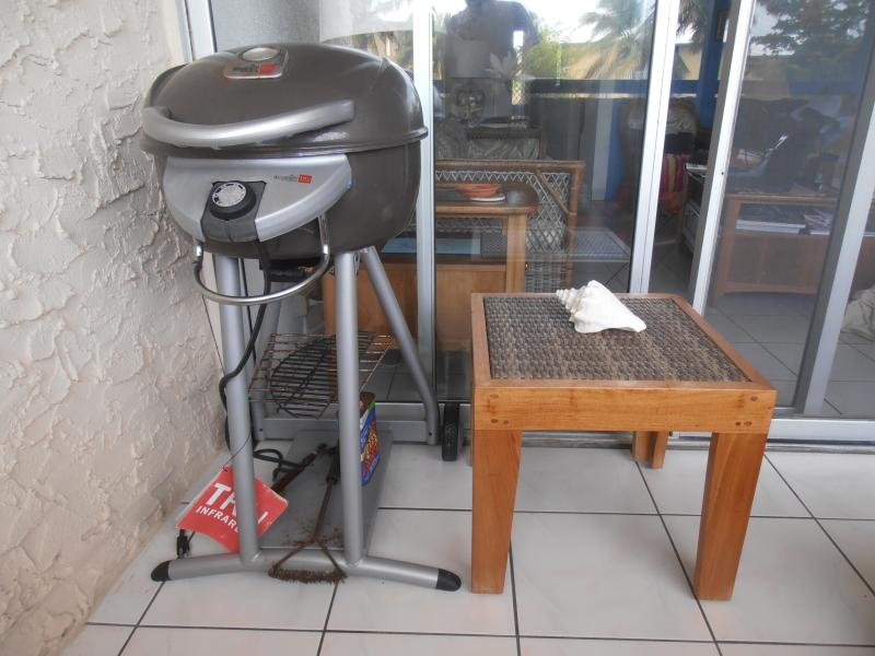 Use The Electric Outdoor Grill On The Gallery Off The Living Room To Cook Out.
