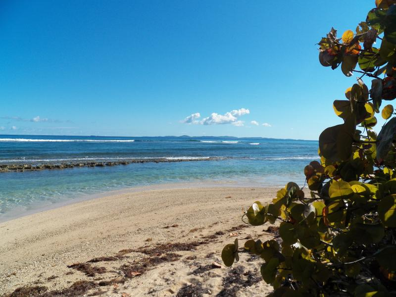 Our Beach, view to the North/East Culebra in the distance