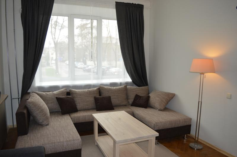 Old Bridge Apartment, holiday rental in Paberze