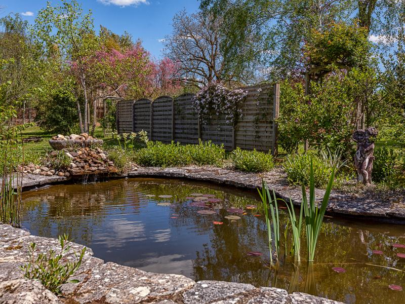 Wonderful views in the back yard of our lovely fish pond and garden