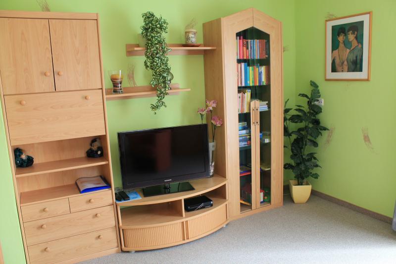 Wohnzimmer mit zusätzlicher Schlafmöglichkeit für 2-3 Personen, Flat SAT TV, Safe, Bibliothek