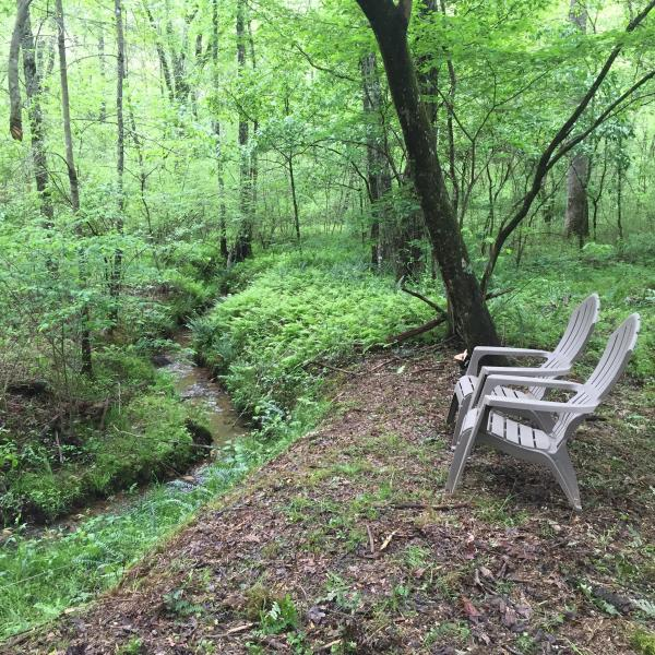 Sentarse en la ejecución pequeño arroyo detrás de la cabina.