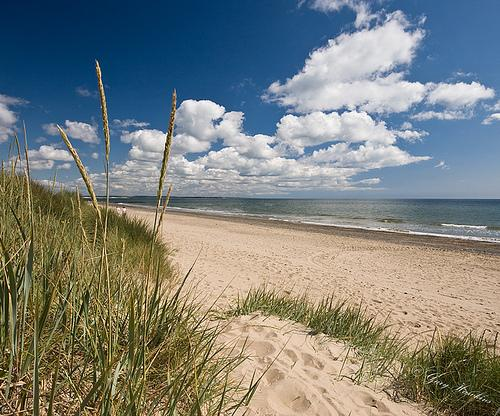 Lovely holiday home close to beach and village, holiday rental in Blackwater