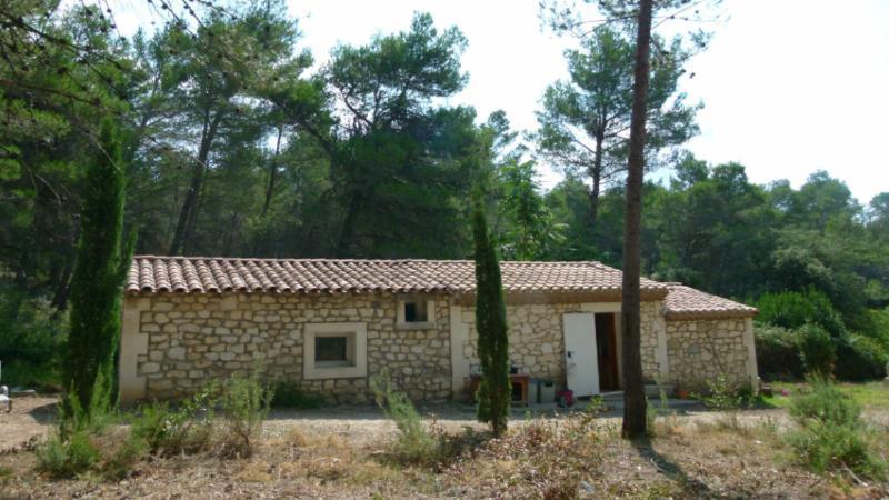 Mazet au coeur des Alpilles, holiday rental in Les Baux de Provence