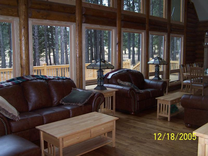 Spacious living room with an amazing deck.