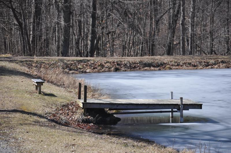Cabin Pond Winter View
