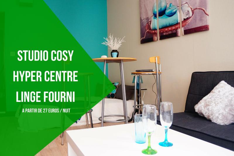 BestHomeNiort - Bel appartement COSY Hypercentre – semesterbostad i Coulon