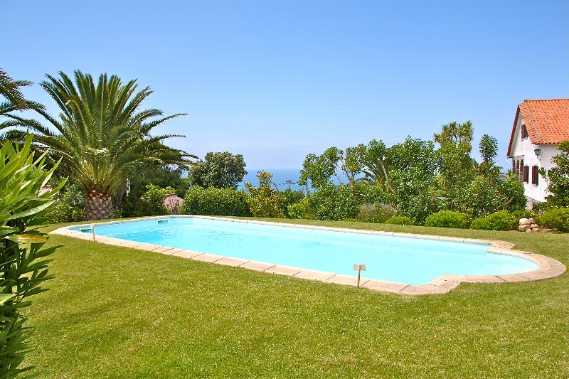 Large private swimming pool in midst of very well cared garden