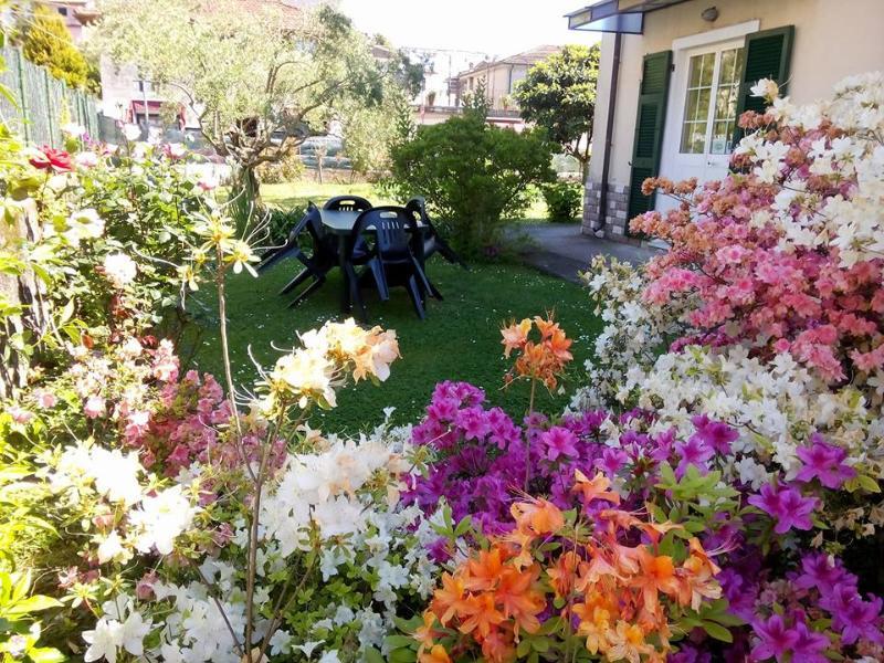 Cà dei merli si trova nelle vicinanze delle famose 5 TERRE e GOLFO DEI POETI, holiday rental in Muggiano