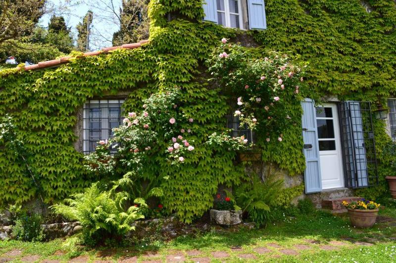 Charming Versilia Cottage, holiday rental in Pedona