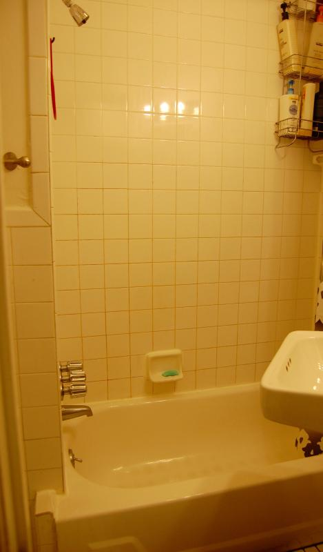 Baño - bañera, ducha, inodoro