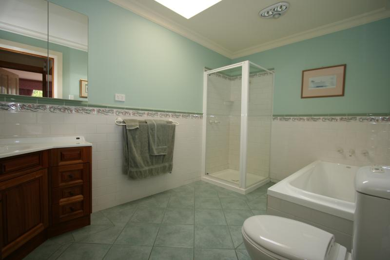 Large bathroom with separate bath & shower.
