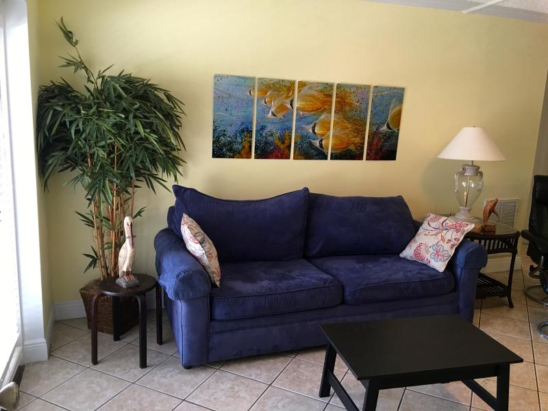 Queen size pull out sofa in family room