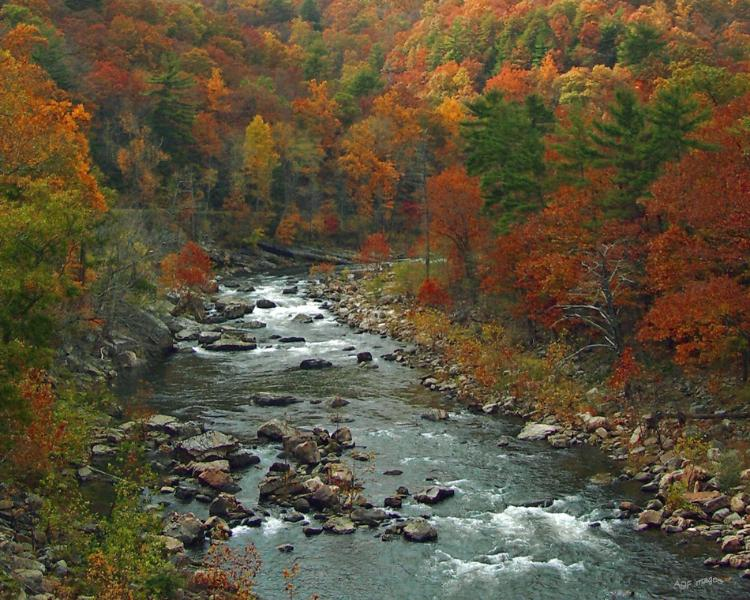 The spectacular Maury River and Goshen Pass are within a few minutes drive of the Rose Cottage.