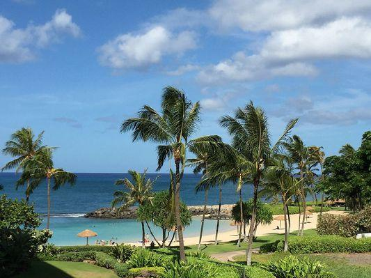 Experience paradise in Oahu