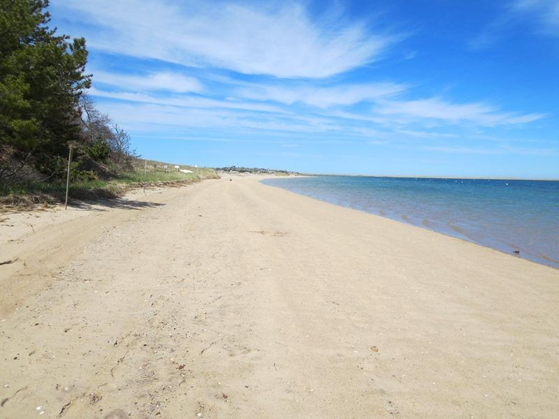 Sandy beautiful beach out at Monomoy Wildlife Refuge, just a mile away-Chatham Cape Cod New England Vacation Rentals