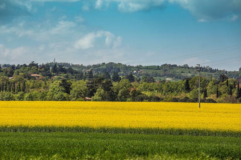 Vista del Parco dei Gessi e dell'Abbadessa a 1 Km