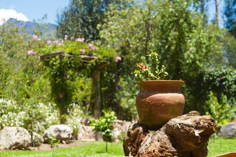 SONQOWASI URUBAMBA VACATION RENTAL  -  Experience Machu Picchu like a local, holiday rental in Sacred Valley