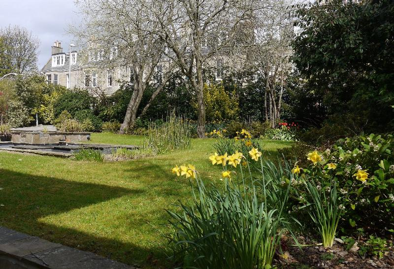 The Front Garden in Spring