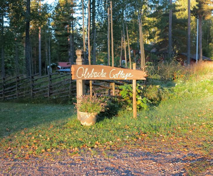 Olsbacka Cottage, en idyll nära Falun., holiday rental in Falun Municipality