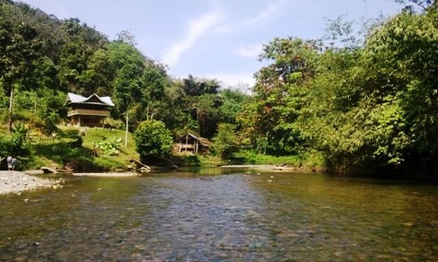 Jungle Hut & Trek Sumatra, holiday rental in Sumatra