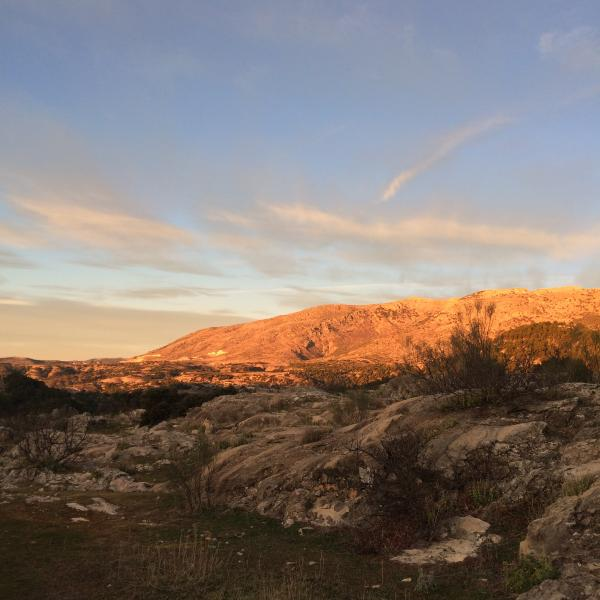 Sunrise touches the flanks of El Buitre