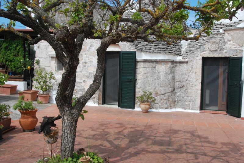 Ampi spazi davanti ai trulli di zia Rosina