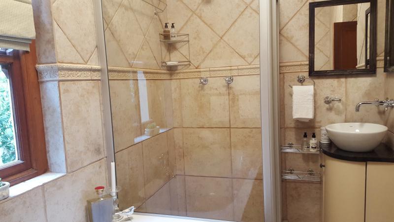 salle de bains avec douche spacieuse