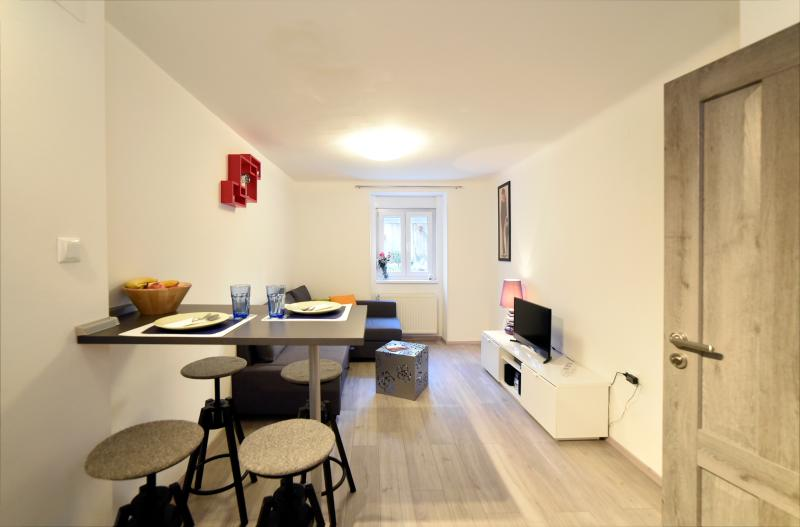 Ap@RtmEnt DaS iN DowNTowN ZaGReb, vacation rental in Zagreb