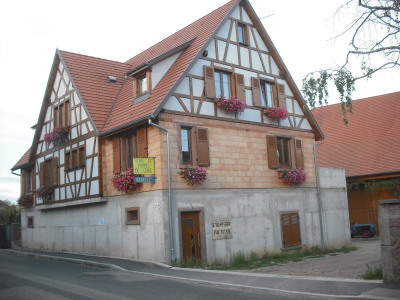 Gîtes Centre Alsace au pied du Haut Koenigsbourg, holiday rental in Rorschwihr