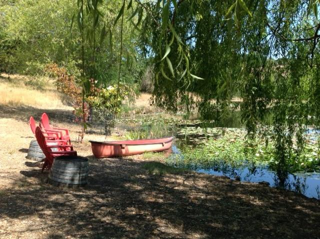 Canoe among the lilies, fish for bass, listen to the birds and bullfrogs