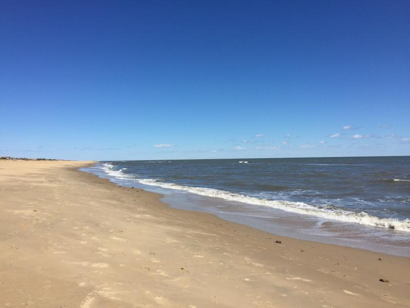 Beautiful sandy beach is 100 yards from the house