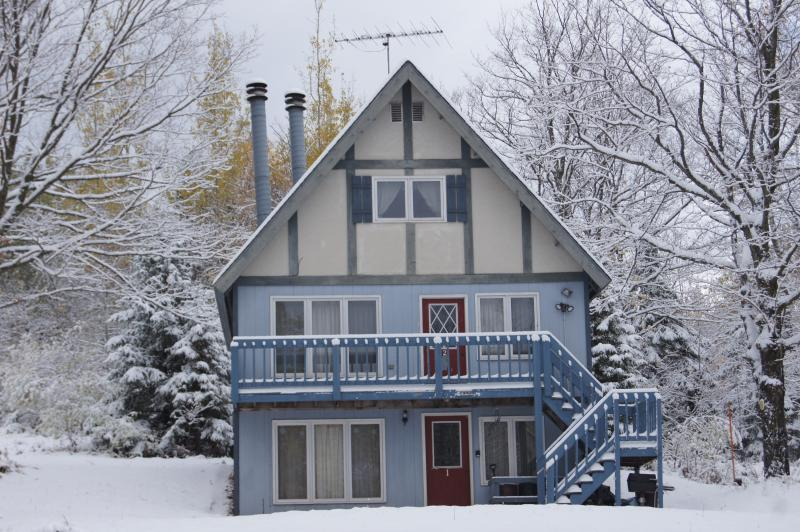 Snow Otter, holiday rental in Bessemer