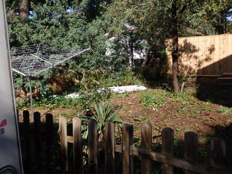 Jardin privatif (en cours d'aménagement)
