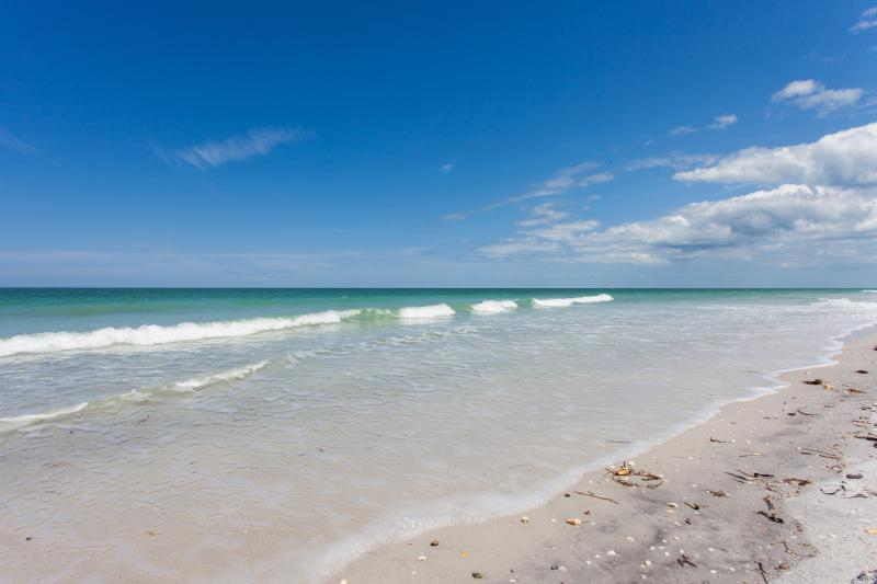 Beautiful Indian Rocks Beach Shoreline!