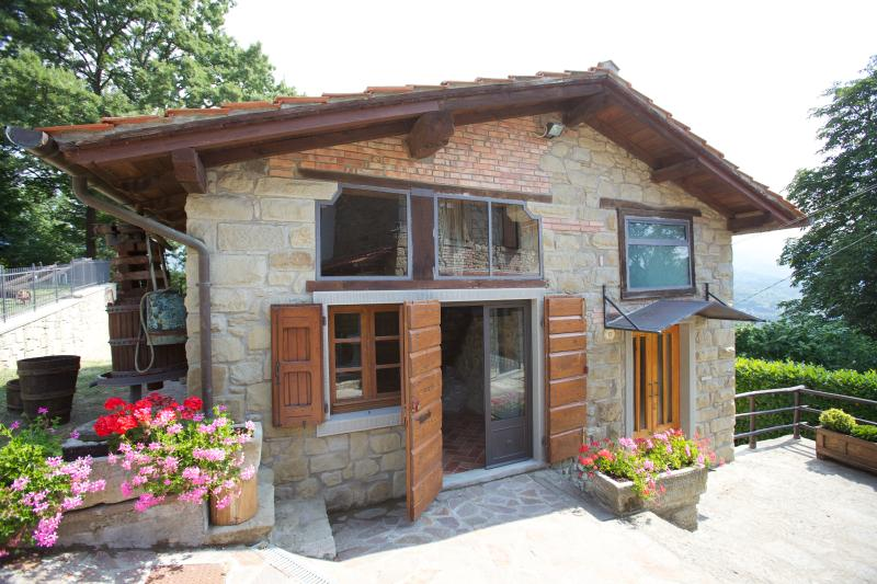 Cottage with private pool in the heart of Tuscany, holiday rental in Stia