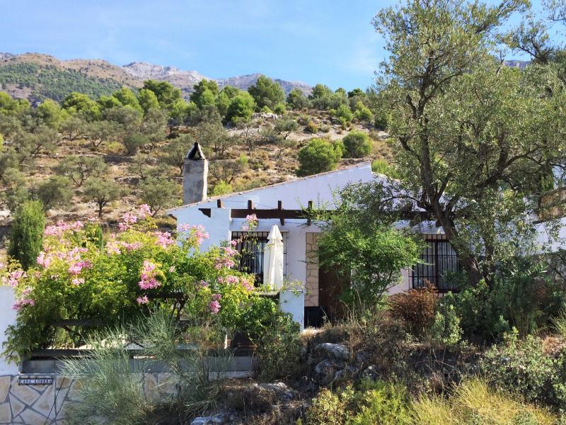 De bungalow, prachtig gelegen aan de rand van het natuurpark