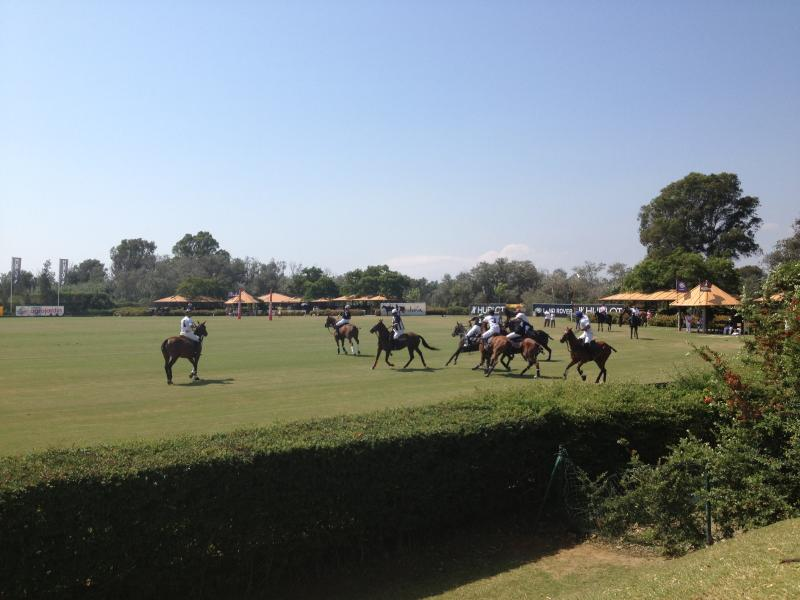 Nearby Polo Fields of  Santa Maria, Sotogrande